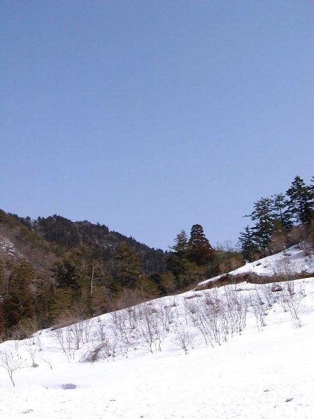 三月の雪_c0057390_23225313.jpg