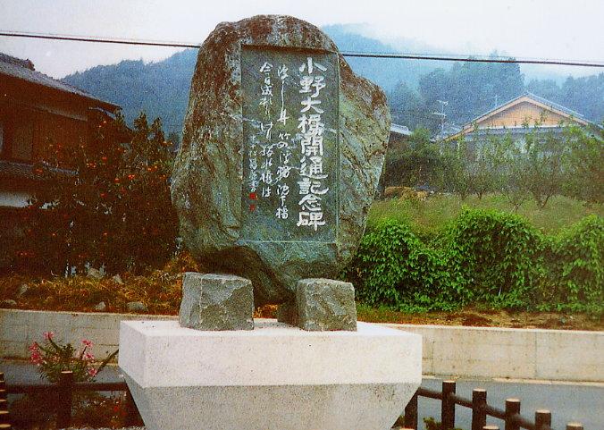 中平松鶴 (四万十町・旧十和村)_a0050405_5174134.jpg