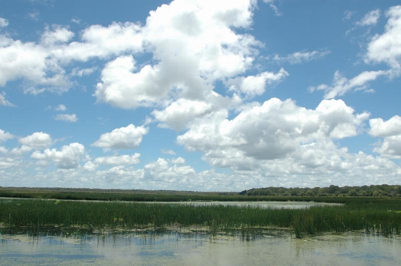 2006.2.10フォグダム自然保護区_f0050534_21173794.jpg