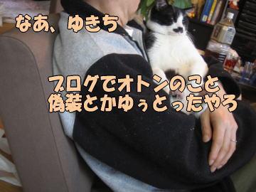 b0041182_647278.jpg