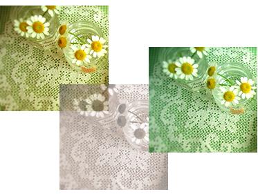 le pique-nique 2006 Printemps_e0073946_093971.jpg
