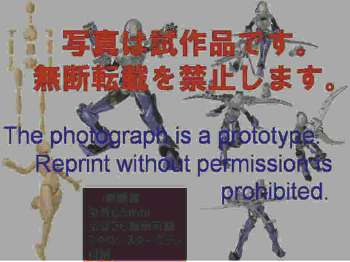b0068615_49561.jpg