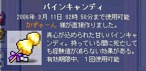 e0036827_1255447.jpg