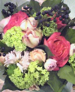 オランダのお花_a0059281_1928636.jpg