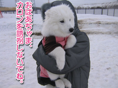 ココちゃんとカロンちゃん_a0044521_21385245.jpg