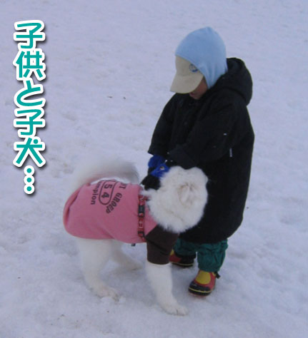 ココちゃんとカロンちゃん_a0044521_2144485.jpg