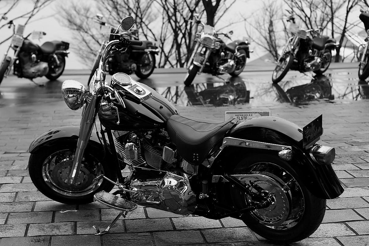 大阪モーターサイクルショー 2_f0021869_9323637.jpg