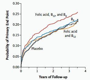 ビタミンで心筋梗塞二次予防を悪化・・・ホモシステイン仮説の否定_a0007242_10575532.jpg