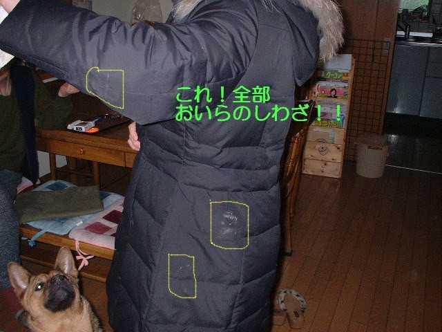 f0000557_21465259.jpg