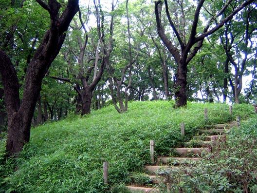 多摩川台公園_f0091067_21162869.jpg