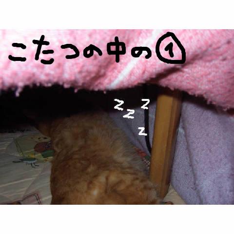 a0057387_18142988.jpg