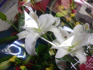 【黄色】黄色いバラ_c0035843_22164617.jpg