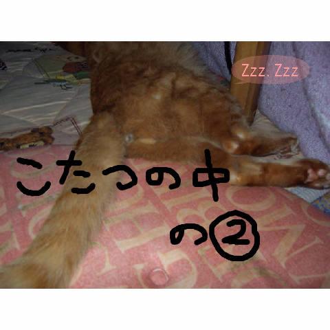 a0057387_3413060.jpg