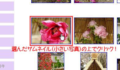 d0020290_17445860.jpg
