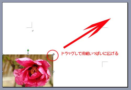 d0020290_17511540.jpg