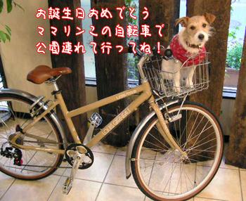 c0031808_1842362.jpg