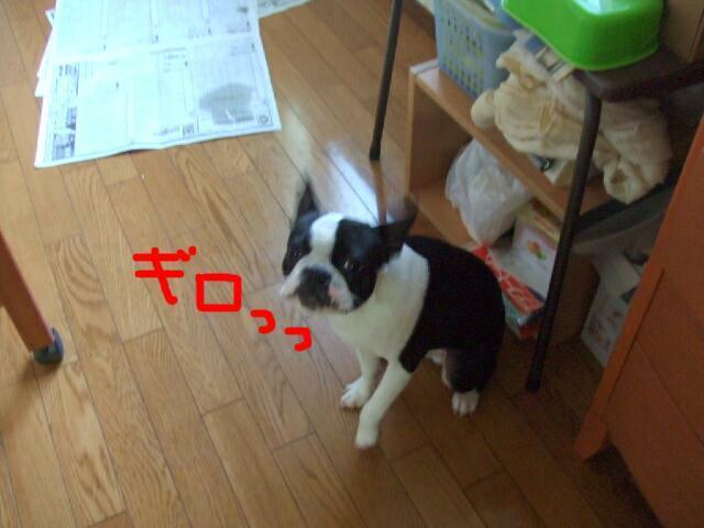 f0059334_12473652.jpg