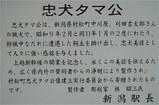 f0042270_1759378.jpg