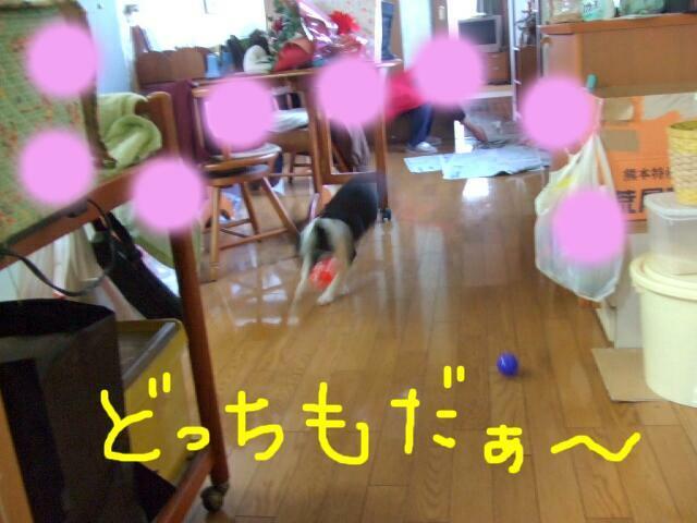 f0059334_1004938.jpg