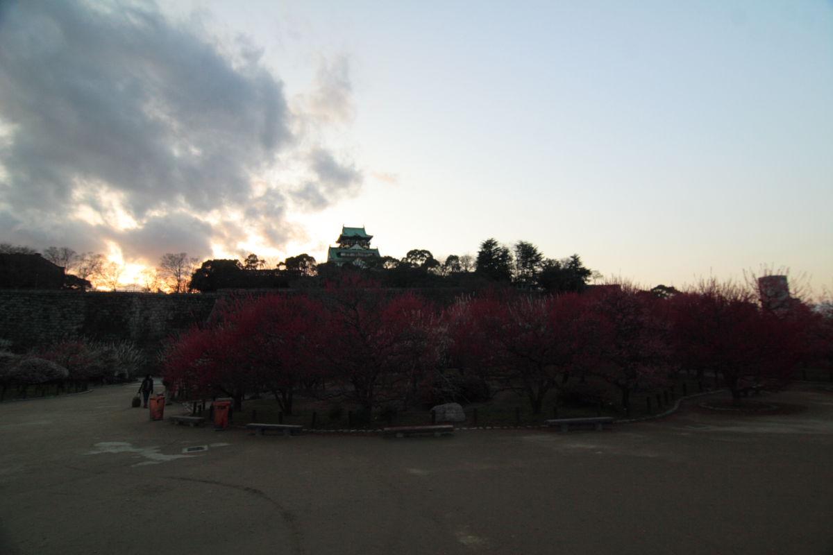 大阪城梅林 リターンズ_f0021869_0105231.jpg