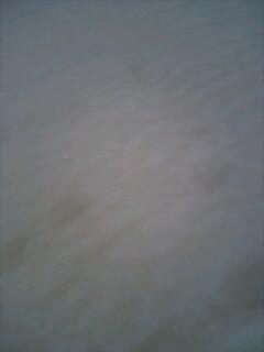 f0012893_8102853.jpg