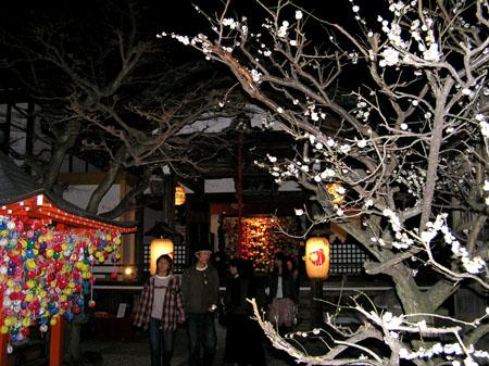 京都・東山花灯路3_e0048413_23503394.jpg