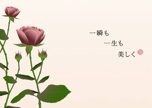 Seeds of Beauty_a0019224_13313777.jpg