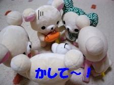 b0069075_20122055.jpg