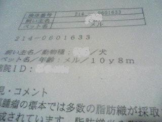 b0016423_1112892.jpg