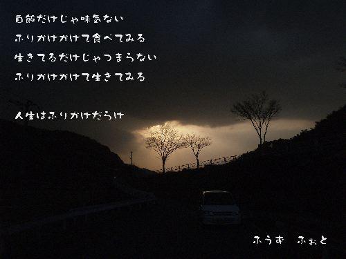 d0013363_2353823.jpg