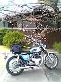 a0064474_20113897.jpg