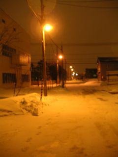 一転、真冬に逆戻り_c0025115_2356896.jpg