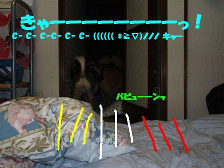 c0000189_13354880.jpg