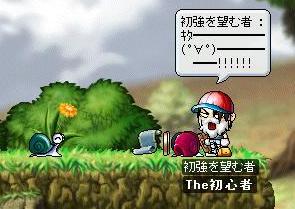 (;゚Д゚)<ワァオ!!_f0081046_402916.jpg