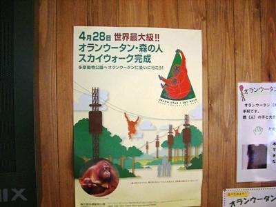 広い広い!多摩動物公園~オランウータン~_c0060651_02205.jpg