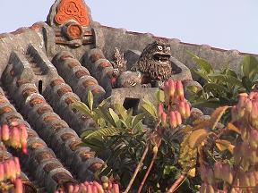 はじめての沖縄・その3_d0066127_22584224.jpg