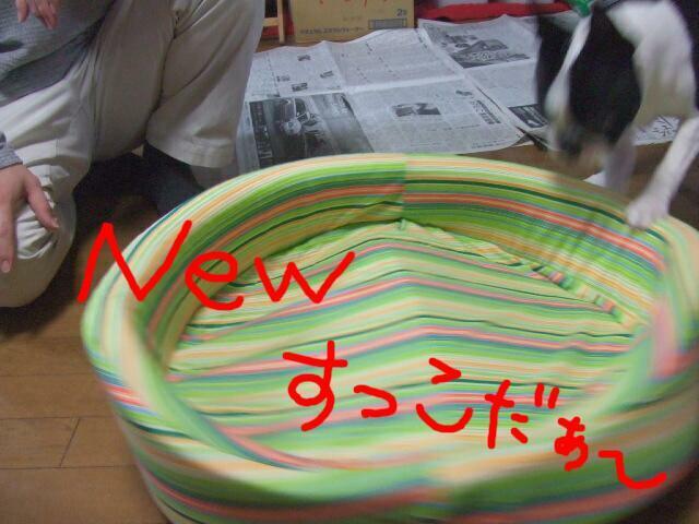 f0059334_23303251.jpg