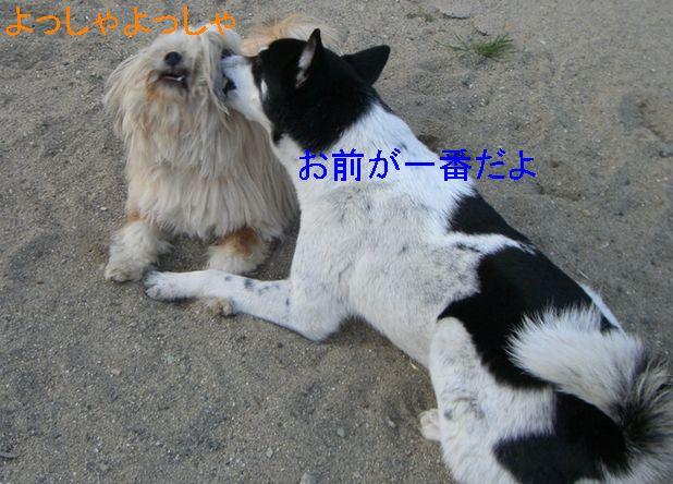 f0053952_12433329.jpg