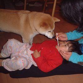 2006年3月20日玲音ちゃん一家来訪_f0060461_842328.jpg