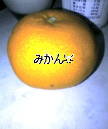 f0089461_1455437.jpg