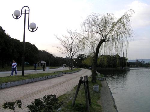 大濠公園_e0048413_2165759.jpg