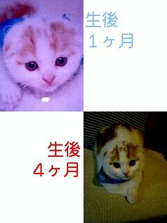 f0079967_20123368.jpg