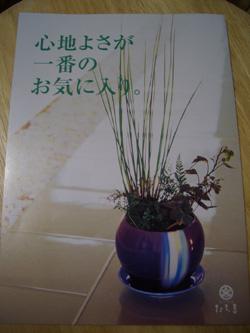 f0066620_2231778.jpg