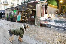 雨のパリ、お散歩_c0024345_12353151.jpg