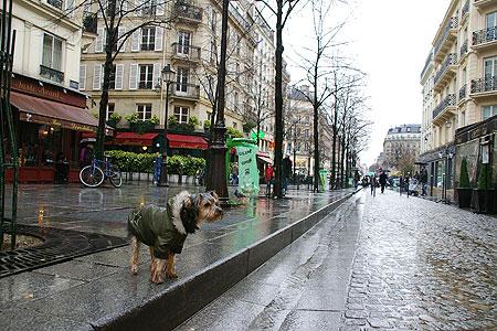雨のパリ、お散歩_c0024345_12404291.jpg