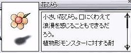 e0018645_1175310.jpg