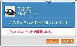 a0060854_7434479.jpg