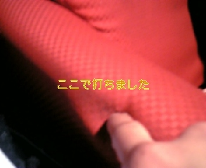 f0041058_2153221.jpg