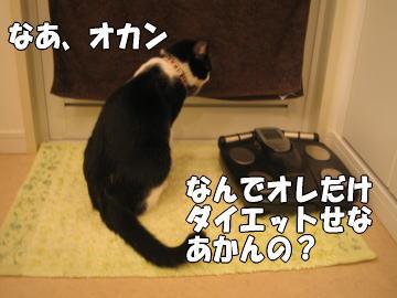 b0041182_001057.jpg