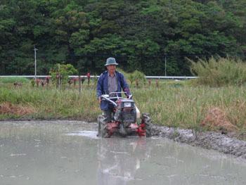 耕運機をかけて、畦(あぶし)も塗って、お疲れ様。_e0028387_23262741.jpg